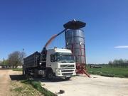 Зерносушилка AgroDry TKM-33 дизель
